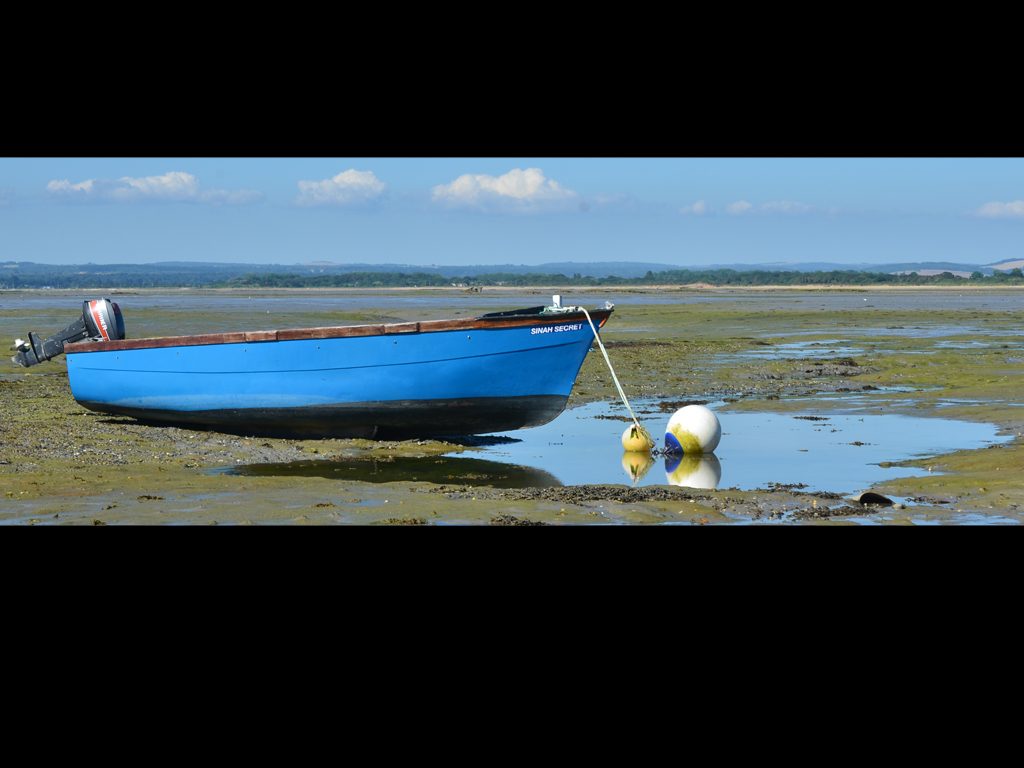 TIDE OUT by Gill Cranshaw.jpg
