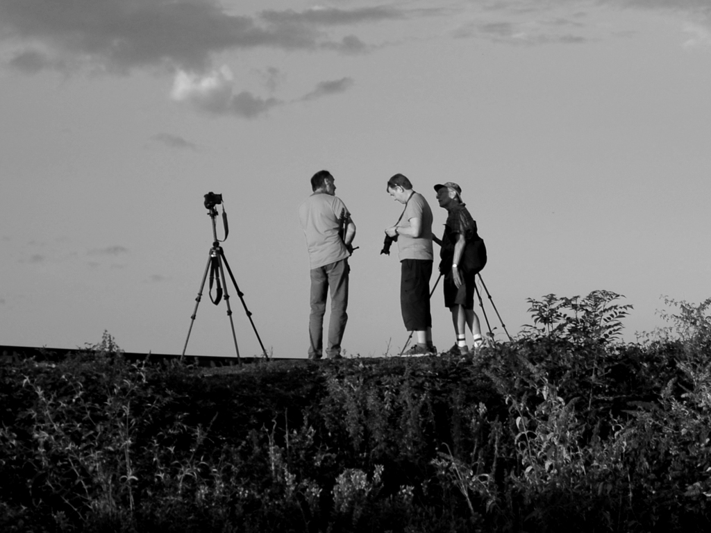 PHOTOGRAPHIC DISCUSSION by Gill Cranshaw