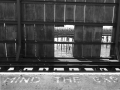 MIND THE GAP by Janet Phillips