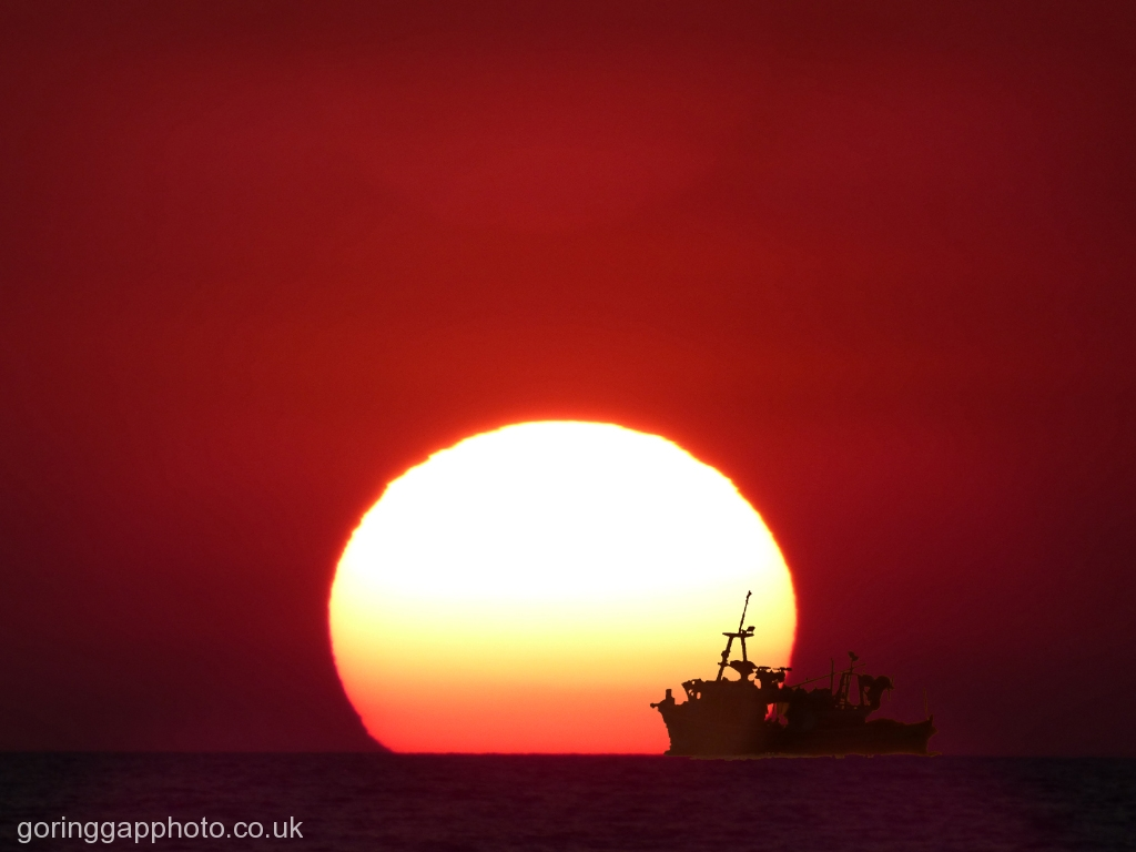 SAILING INTO THE SUN by Janet Phillips